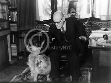 1937 SIGMUND FREUD ANALYST THERAPIST W/ CHOW DOG IN STUDY HISTORIC Largest Sizes