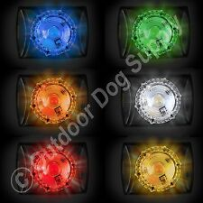 Hunting Series Locator Dog Pet Collar Safety Beacon Adventure Light in 6 Colors!