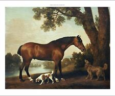 GEORGE STUBBS Bay Hunter and Spaniels Horse Dog PRINT various SIZES available