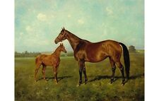 REICHMANN Mare And Foal SHINING motherhood racehorse breeding landscape CANVAS