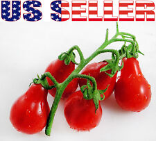 50+ ORGANIC Red Pear Cherry Tomato Seeds Heirloom Sweet NON-GMO Productive!!!