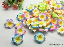 25X50X100X500X Foam Frangipani/Plumeria/Hawaiian 2.5 inch  Heads Wholesale Lots