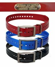 Collar Strap with Free Brass Name Plate Pet ID Tag for Puppies to Big Dogs