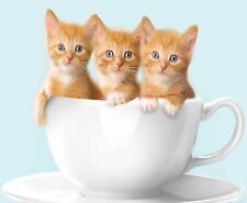 CUTE CAT / KITTEN MOUSE MATS / PADS -Various designs - can be personalised FREE