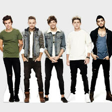 OFFICIAL ONE DIRECTION TABLE STANDEE DESKTOP STANDUP CUTOUT CARDBOARD MASKS 1D