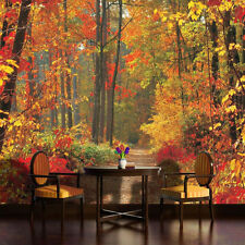 PHOTO WALL MURAL WALLPAPER WALLCOVERING HOME DECOR FOREST IN FALL AUTUMN 4-002VE