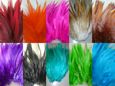 10 x Feathers Arts Crafts Scrapbooking Card Making Embellishments - Fine Quality
