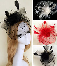 Races Women Feather Hair Clip Accessories Wedding Cocktail Party Veil Fascinator