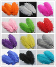 free shipping!15pcs High Quality Natural OSTRICH FEATHERS 6-8 inch/15-20 cm