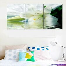 Frames Picture Lotus classic Flower Photo Painting Poster Canvas Wall Art Decor