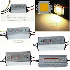 20W 30W 50W 100W LED Chips Warm White + Waterproof  LED Driver High Power Supply