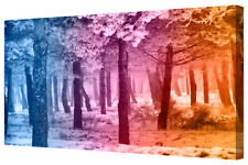 Abstract Multi Coloured Forest Fantasy Rainbow Colour Canvas Picture LARGE Print