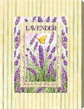 Lavender by Vicky Howard - Canvas Art Print
