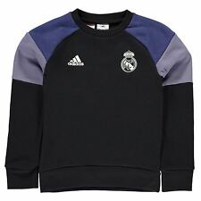 Adidas Real Madrid Training Shorts Juniors Black/Purple Football Soccer