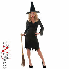 Ladies Classic Wicked Witch Black Costume Halloween Adult Fancy Dress Outfit New