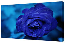 Vivid Royal Blue Rose Petals Framed Floral Canvas Art Picture Wall Hanging Print