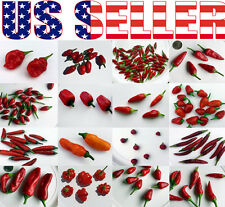 ORGANICALLY GROWN Hot Pepper Seeds Heirloom NON-GMO Rare Purple Black Exotic USA