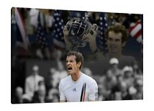 Andy Murray 30x20 Inch Canvas - US Open Tennis Champion Print Framed Picture Art