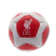 Liverpool FC Kick n Trick ST Football Soccer EPL Bean Filled Ball
