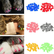 New 20pcs Soft Cat Pet Nail Caps Claw Control Paws off +Adhesive Glue Size US