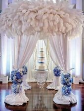 Art Stylish DIY Craft Party Decor Beautiful Natural 10-12 inch Ostrich Feathers