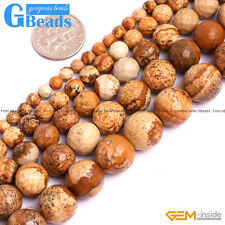 Natural Picture Jasper Gemstone Faceted Round Beads Free Shipping Strand 15""