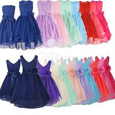 Kid Girl Baby Flower Pleated V-neck Formal Occasion Wedding Party Communion Dres
