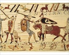 25x20cm Photo-Bayeux Tapestry. 1066-1077. Battle of Hastings-8280527-8105