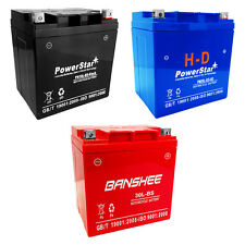 YTX30L-BS SLA Replacement - Maintenance Free - Sealed AGM Motorcycle Battery