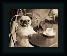 Funny Cafe Pug at a Table Drinking Tea Cute Puppy Framed Art Print Wall Décor