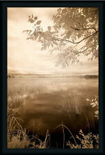 Peaceful Morning II Photography Lake Framed Art Print Wall Décor Picture