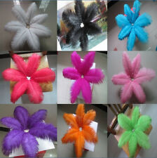 Beautiful! 50pcs natural ostrich feathers (8-10inch/20-25cm )variety of colors