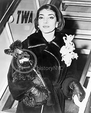 1958 MARIA CALLAS MOVIE STAR POODLE TWA AIRPORT PHOTO Largest Sizes
