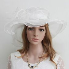 New Church Kentucky Derby Wedding Bridal Cocktail Party Organza  Dress Hat 3021