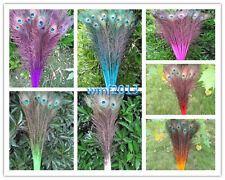 Wholesale 10-100 pcs beautiful peacock feather eyes 28-32 inch variety of colors
