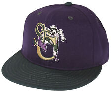 Pro Line MiLB Minor League Baseball St. Catharines Stompers Cap Hat - Purple