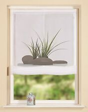 Roller Blinds Clear Digital Print Grass Stone/4 Widths Deliverable Lieferbar