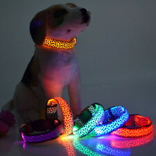 Pets Dogs Night Safety Collar Light Up Leopard Nylon LED Collars S M L XL