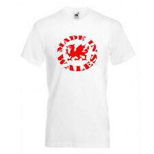 Made in Wales,Welsh Dragon Logo Kids T Shirts Boys,Girls Tee Size 5-13 years