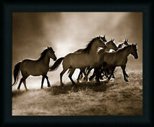 Wild Horses by Lisa Dearing Sepia Wildlife Framed Art Print Décor Picture 16x20