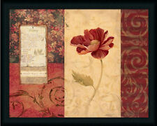 Peony Montage by Carol Vintage Botanical Framed Art Print Wall Décor Picture