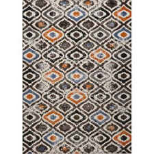 Thick and plush multi color Shag Rug
