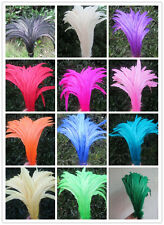 Wholesale 10/50/100 pcs high quality rooster tail feathers 10-12 inches 25-30cm