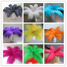 Wholesale 10-100pcs ostrich feathers 6-24 inches / 15-60 cm of various colors