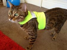 YELLOW HIGH VISIBILITY - LAND O BURNS BENGALS CAT WALKING JACKET / HARNESS/ VEST