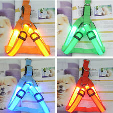 LED Glow Flashing Light Dog Belt Harness Leash Tether Pet Light-up Safety