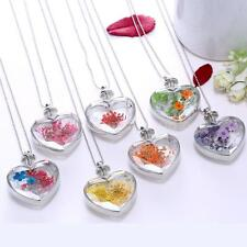 New Natural Real Dried Pressed Flowers Necklace Pendant Heart Glass Locket Y5H5