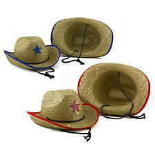 Red Blue Straw Cowboy Hats Dress Up Kids Party Western Rodeo Sheriff Police Lot