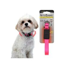 NITE IZE Nite Dawg Collar for Dogs - Yellow or Pink XS