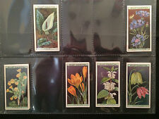 ☆ Wills - Wild Flowers 1923 (G) ***Pick The Cards You Need***